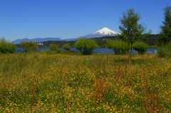 Wulkan Villarica Chile zdjęcie royalty free