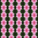 Wunderbar von der rosa Hibiscusblume nahtlos stock abbildung