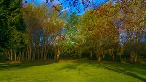Wunderbare Gärten von Madeira Lizenzfreie Stockfotografie