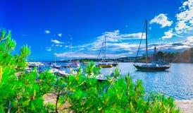 Wunderbare romantische Sommerabendlandschaftspanoramaküstenlinie A Stockbilder