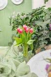 Wunderbare rote Tulpen in einem Vase stockfoto