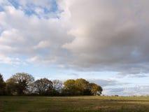 Wunderbare Schüsse des gesamten Details Landschaftsdes Bauernhofes im Land Lizenzfreie Stockbilder