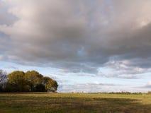 Wunderbare Schüsse des gesamten Details Landschaftsdes Bauernhofes im Land Lizenzfreies Stockbild