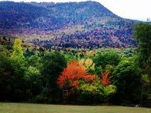 Wunderbarer Autumn Landscape in Frankreich lizenzfreies stockfoto