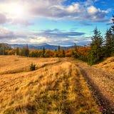 Wunderbarer Bergblick Sommerlandschaft in den Bergen und im blauen Himmel Lizenzfreie Stockfotografie