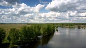 Wunderbarer blauer Fluss in Forstwirtschaftsbanken nahe endlosen Feldern stock video