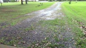 Wunderbarer Regen stock video footage
