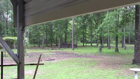 Wunderbarer Regen stock footage