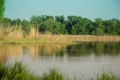 Wunderbarer Sommerfluß Dnieper Dnipro stockfotos