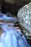 Wunderbarer Waldtürkisfluß, der in Wald fließt Lizenzfreie Stockfotos