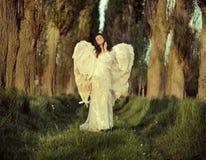 Wunderbarer weiblicher Engel, der über den Wald geht Stockfotografie