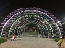 Wundergarten lizenzfreies stockfoto