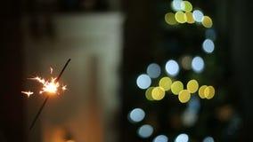 Wunderkerze auf Hintergrund des Weihnachtsbaums stock video