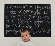 Wunderkind little boy on math Stock Photography