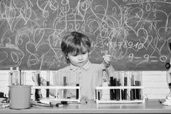 Wunderkind och tidig utveckling Liten elev som l?r kemi i skola Kemilaboratorium Praktisk kunskap royaltyfria bilder