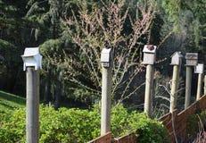 Wunderliche Reihe von kunstvollen rustikalen Vogelhäusern auf Gartenzaun Stockbilder