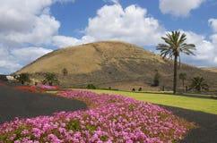 Wundervolle Farben von Lanzarote lizenzfreie stockbilder