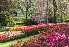 Wundervoller blühender Frühlingsgarten im April Stockfoto