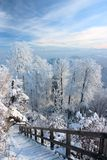 Wundervoller Wintertag Lizenzfreie Stockbilder