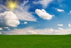 Wundervolles grünes Feld bis zum Frühling. Lizenzfreies Stockbild