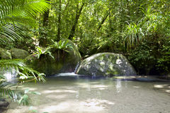 Wurrmbu Creek Mossman Gorge Australia royalty free stock image