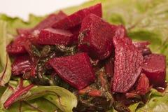 Wurzel-Salat Lizenzfreie Stockbilder