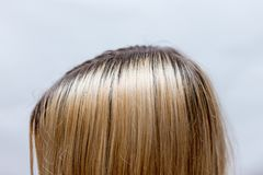 Wurzeln des dunklen Haares nachdem dem Blondinensterben wieder wachsen stockfoto