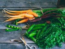 Wurzeln, Frischgemüse, Karotten, rote Rüben und Erbsen mit einer Hülse Stockfoto