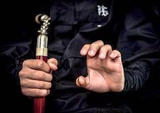 Wushu искусство Стоковые Фотографии RF