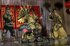Wushu aikidovarriors Royaltyfri Bild