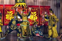 Wushu aikidovarriors Royaltyfri Fotografi