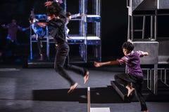Wushu Dance Royalty Free Stock Photo
