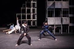 Wushu dans royaltyfria bilder