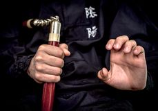 Wushu expertis royaltyfri foto