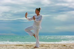 Wushu man on the beach Stock Image