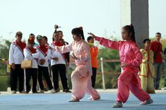 Wushu martial Royalty Free Stock Images