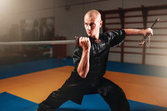 Wushu master training with sword, martial arts Stock Image