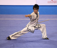 Wushu performance Royalty Free Stock Photography