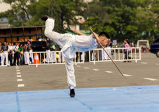 Wushu showdown Stock Photos