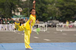Wushu showdown Royalty Free Stock Photography