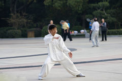 Wushu-taiji cinese Fotografia Stock Libera da Diritti
