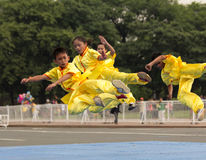 Wushu Team Royalty Free Stock Image