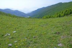 Wutai Mountain scenery Royalty Free Stock Photos