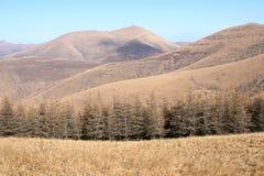 wutaishan Mt sceneria Fotografia Stock