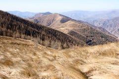 wutaishan Mt sceneria Obrazy Stock