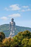 Wuxi Lingshan Buddha Stockfotografie