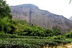 Wuyi berg, danxiageomorphologylandskapet i Kina Arkivbilder