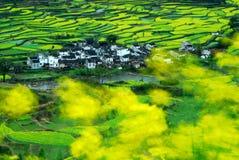 Wuyuan στοκ εικόνες με δικαίωμα ελεύθερης χρήσης