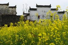 Wuyuan στοκ φωτογραφίες με δικαίωμα ελεύθερης χρήσης