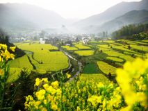 WuYuan Royalty Free Stock Photos